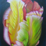 "Budding Tulip. Acrylic on Canvas.  24"" x 30"""
